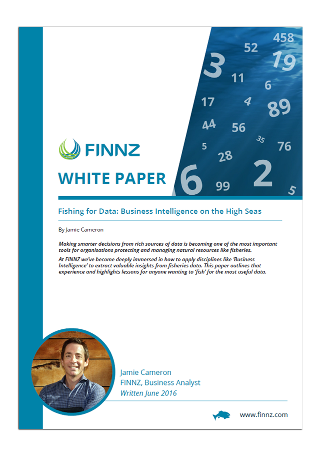 Fishing for Data: Business Intelligence on the High Seas